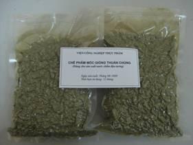 Chế phẩm nấm mốc thuần chủng dùng cho sản xuất rượu gạo quy mô công nghiệp